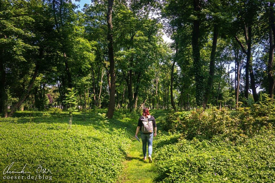 Naturpfad auf dem Wiener Zentralfriedhof