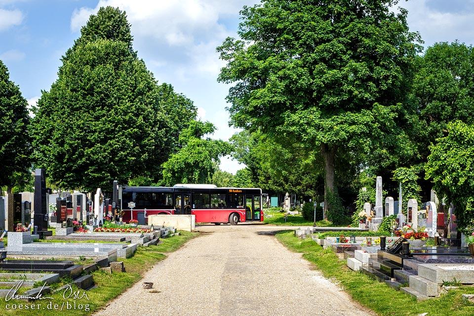 Buslinie 106 auf dem Wiener Zentralfriedhof