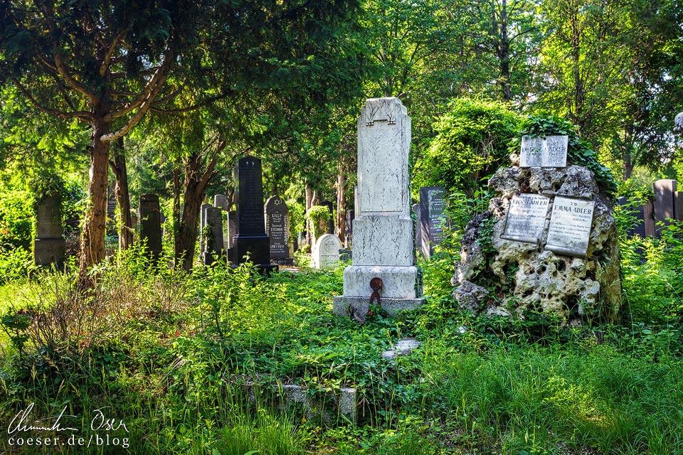 Alter jüdischer Friedhof auf dem Wiener Zentralfriedhof