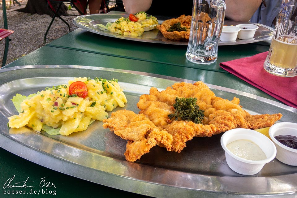 Wiener Schnitzel im Restaurant Concordia Schlössl gegenüber des Wiener Zentralfriedhofs