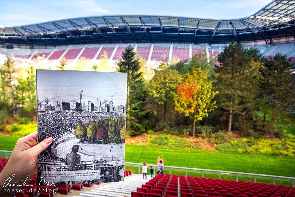 Bleistiftzeichnung von Max Peintner und Kunstinstallation FOR FOREST im Wörtherseestadion in Klagenfurt