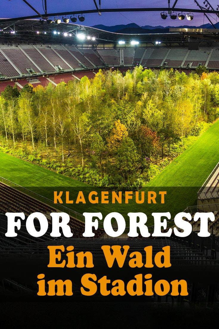FOR FOREST: Erfahrungsbericht zur Kunstinstallation