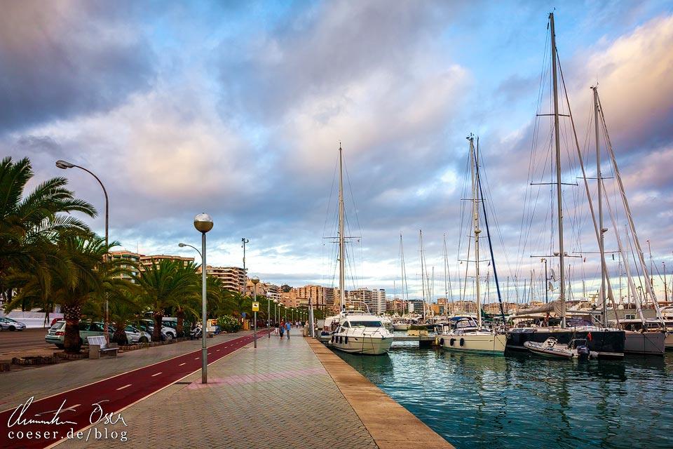 Der Hafen von Palma de Mallorca