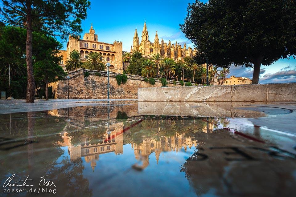 Spiegelung der Kathedrale von Palma de Mallorca