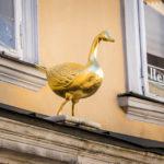 Die Gans auf dem Haus zur Goldenen Gans in Klagenfurt