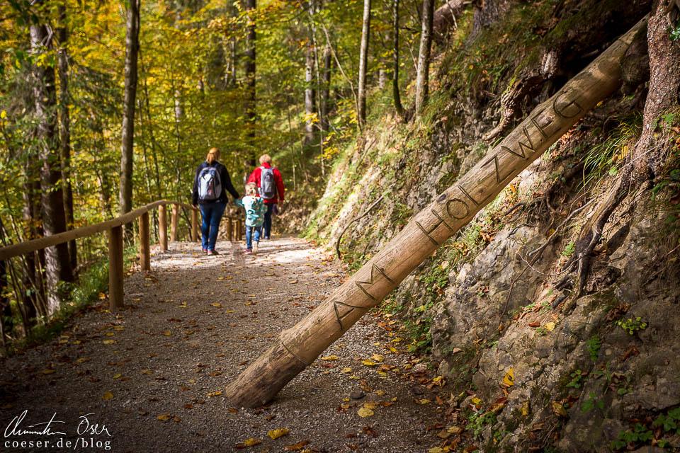 """Themenweg """"Auf dem Holzweg"""" in der Erlebniswelt Mendlingtal"""