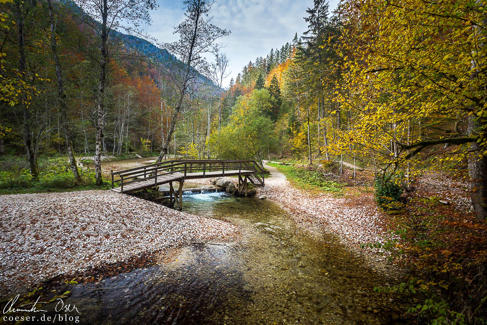 Wanderweg durch die Erlebniswelt Mendlingtal