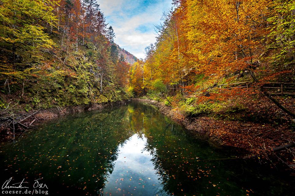 Klaussee im Herbst in der Erlebniswelt Mendlingtal