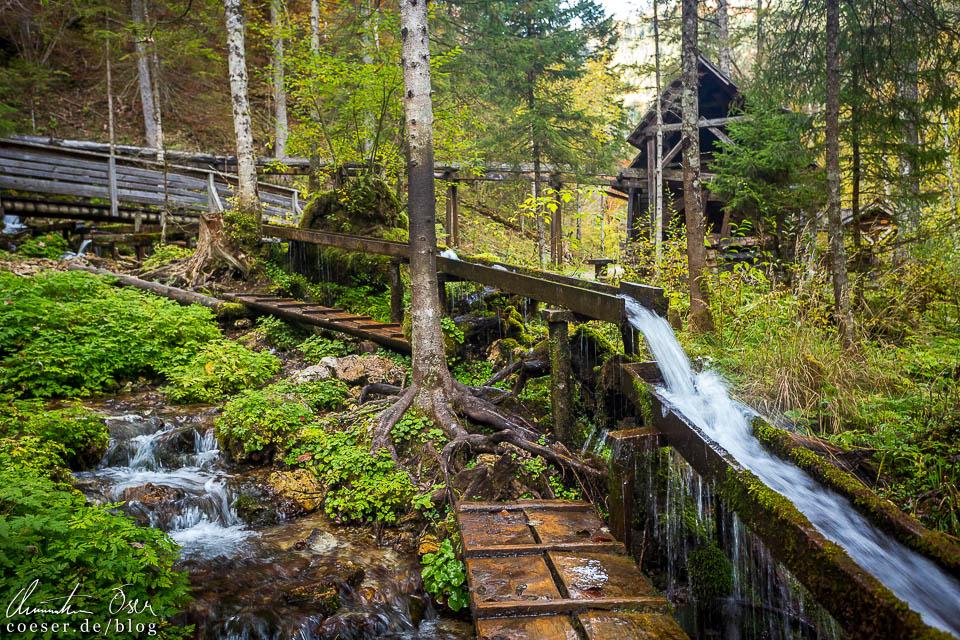 Stege und Wasserleitungen in der Erlebniswelt Mendlingtal