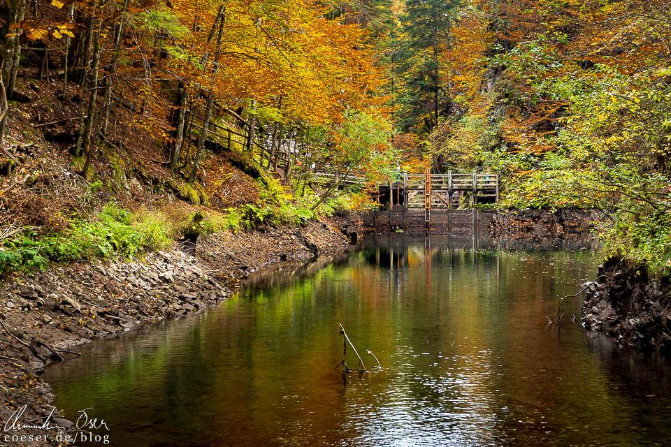 Der herbstliche Klaussee während des Schautriftens (Holztrift) in der Erlebniswelt Mendlingtal