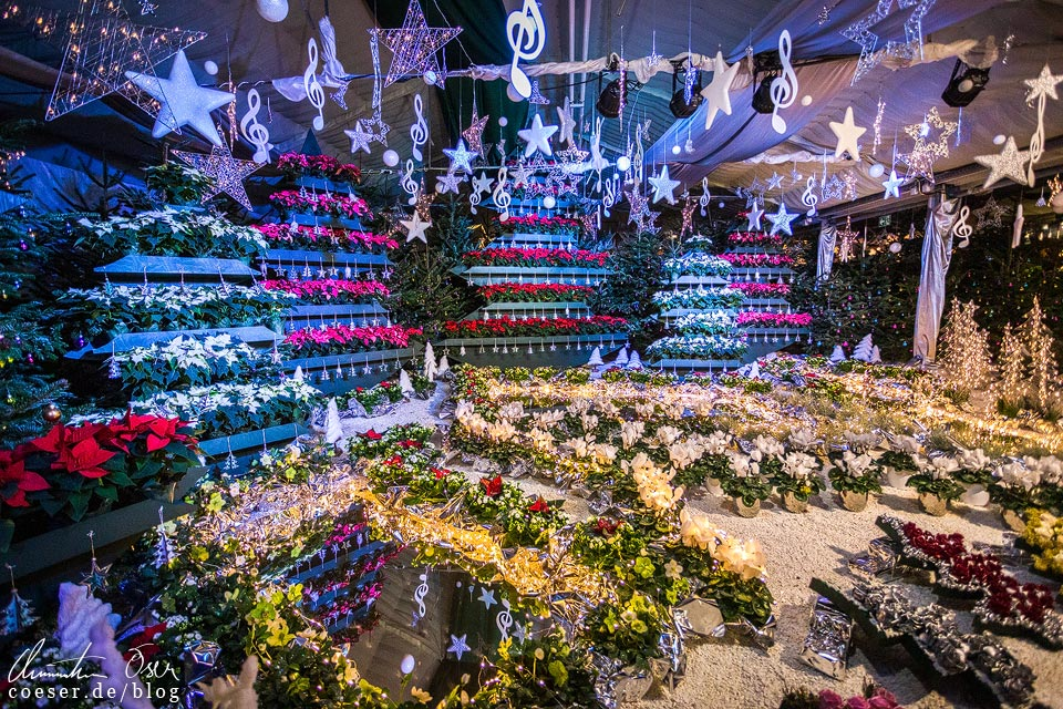 Weihnachtsausstellung in den Blumengärten Hirschstetten in Wien
