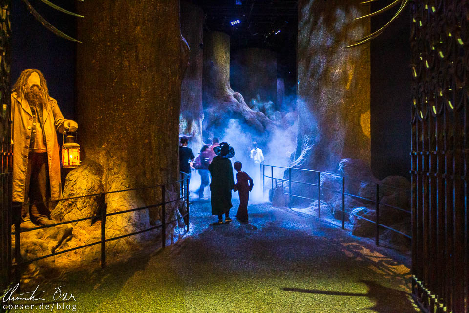 Verbotener Wald in der Harry Potter Studio Tour London