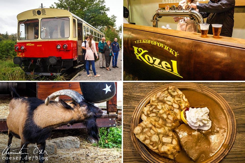 Reisetipps, Reiseinspiration und Fotospots aus der Brauerei Velké Popovice, Tschechien