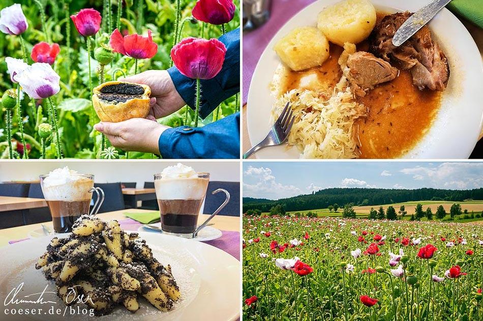 Reisetipps, Reiseinspiration und Fotospots aus dem Mohndorf Armschlag, Österreich