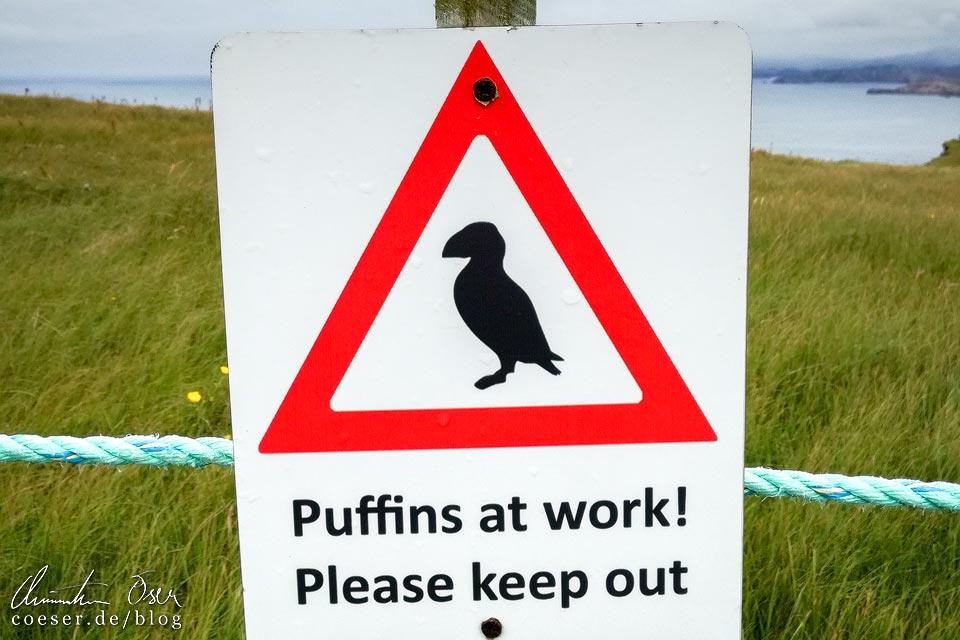 Hinweisschild Papageientaucher auf Handa Island in Schottland
