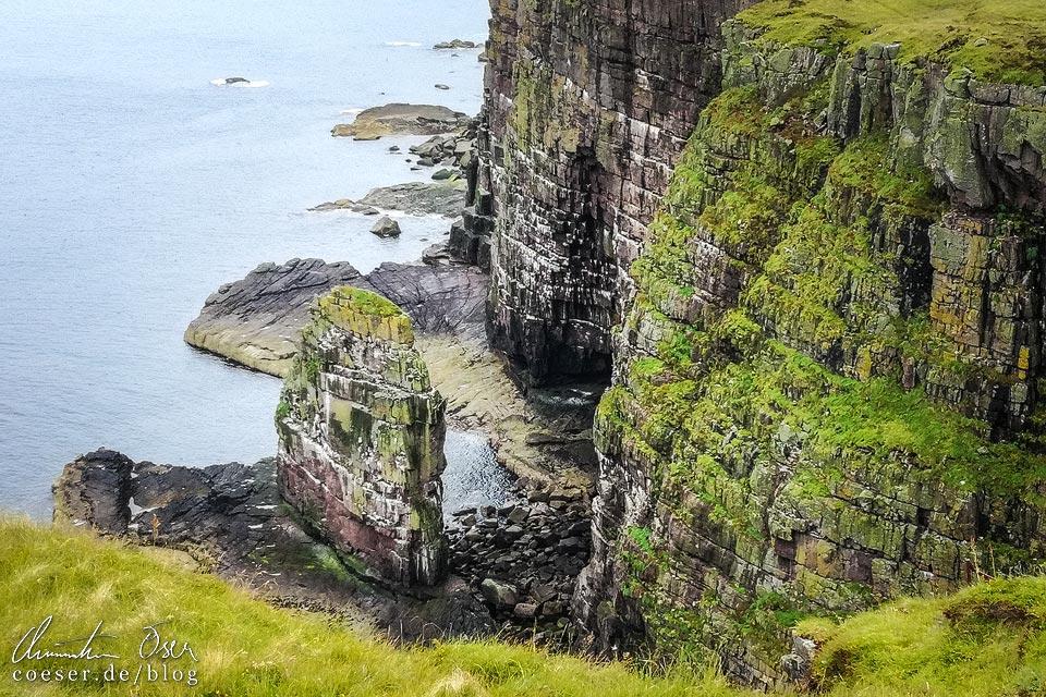 Felsnadel und Steilklippe auf Handa Island in Schottland