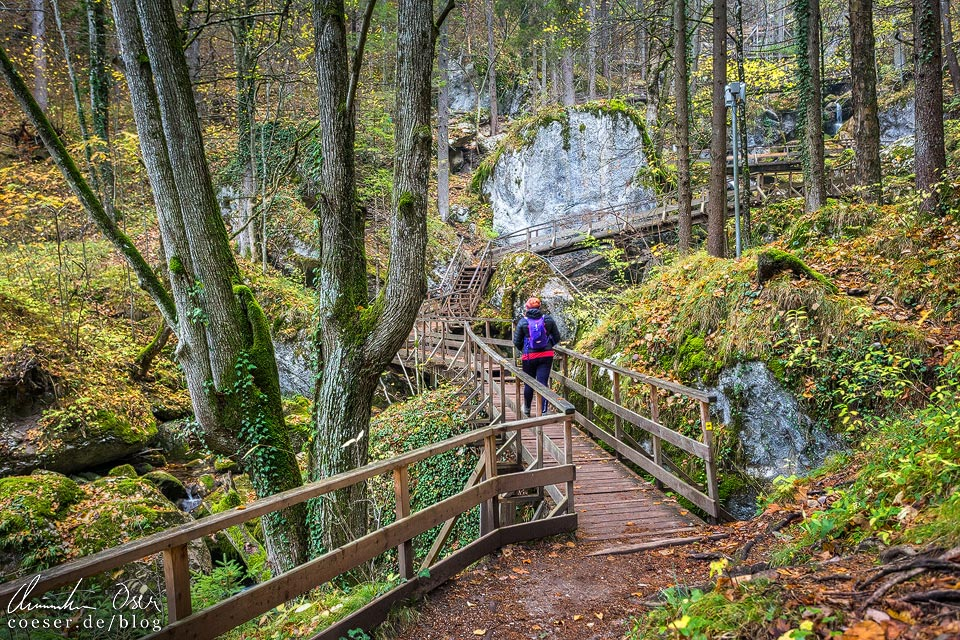 Wanderweg entlang der Myrafälle in Muggendorf
