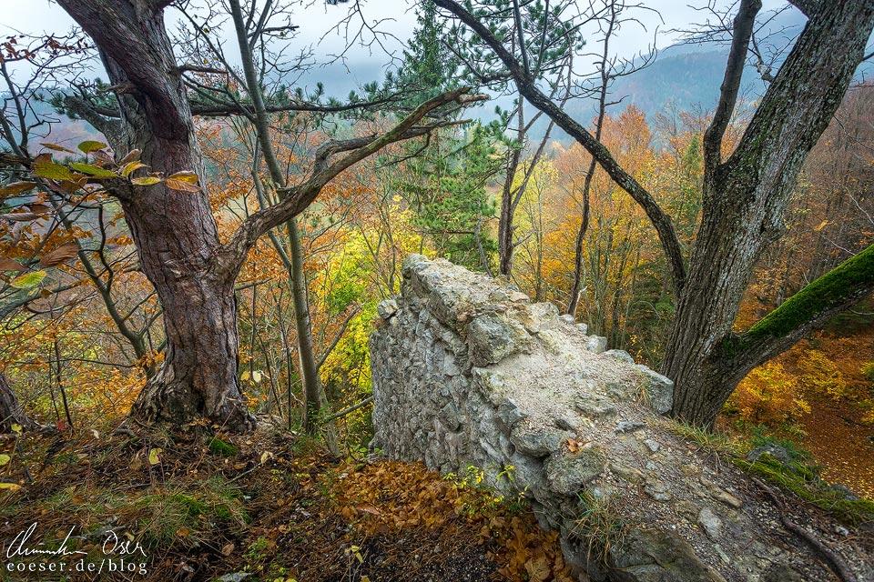 Mauerreste auf dem Wanderweg zum Hausstein entlang der Myrafälle