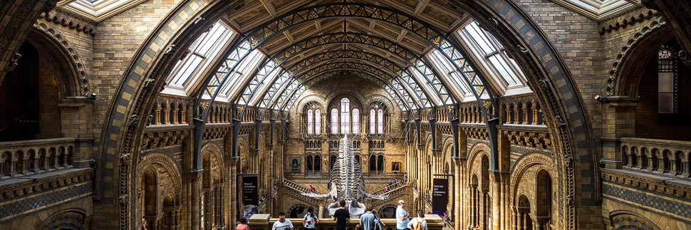 Haupthalle im Natural History Museum in London