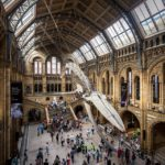 Große Halle im Natural History Museum in London
