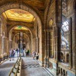Seitengänge der Großen Halle im Natural History Museum in London