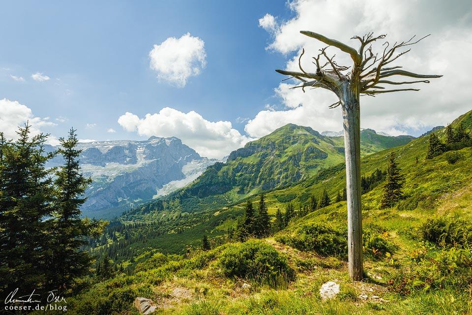 Latschätzer Höhenweg im Montafon