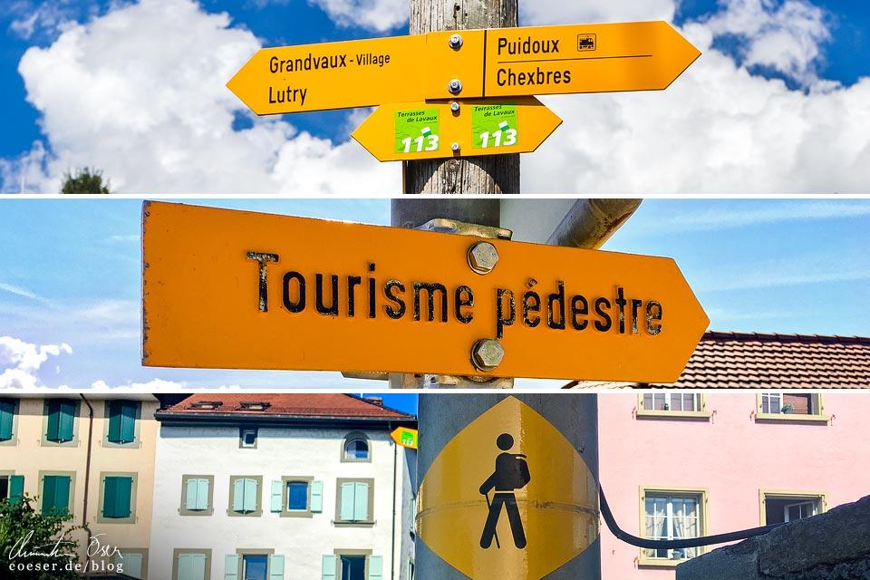 Wegweiser entlang der UNESCO-Weinterrassen von Lavaux