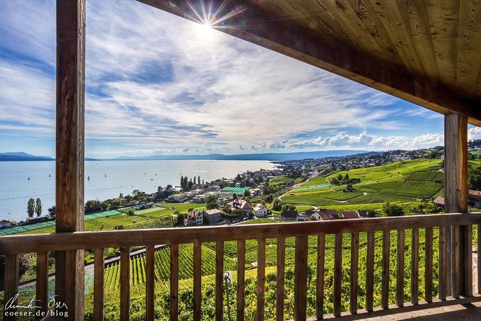 Aussichtspunkt auf die UNESCO-Weinterrassen von Lavaux