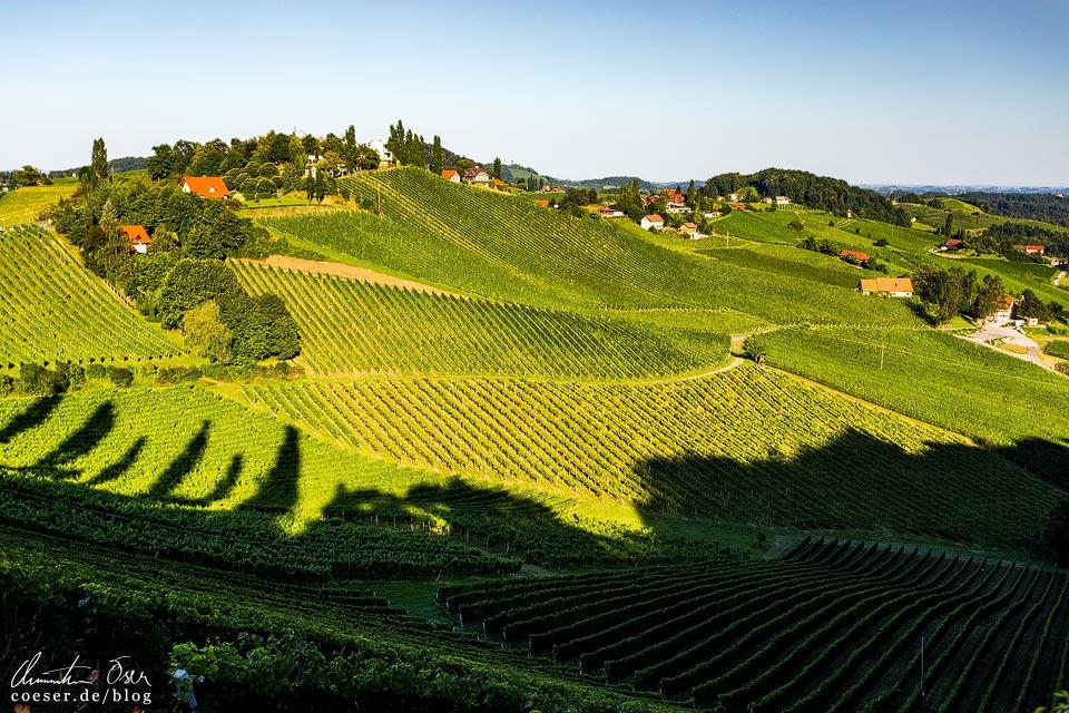 Landschaft und Weinberge in Gamlitz in der Südsteiermark