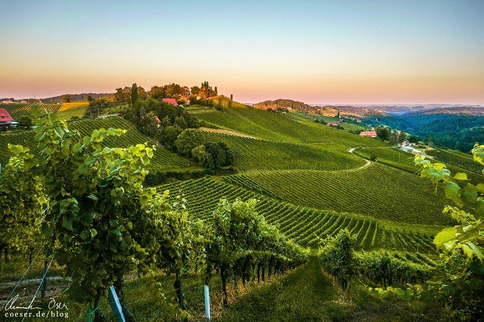 Sonnenuntergang, Landschaft und Weinberge in Gamlitz in der Südsteiermark