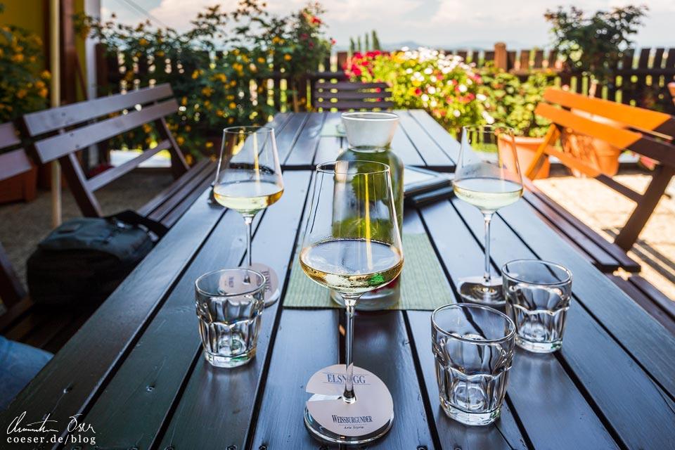 Weingut Elsnegg in Eckberg/Gamlitz in der Südsteiermark