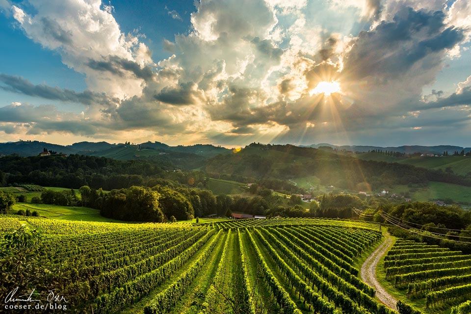Sonnenuntergang, Landschaft und Weinberge in Eckberg/Gamlitz in der Südsteiermark