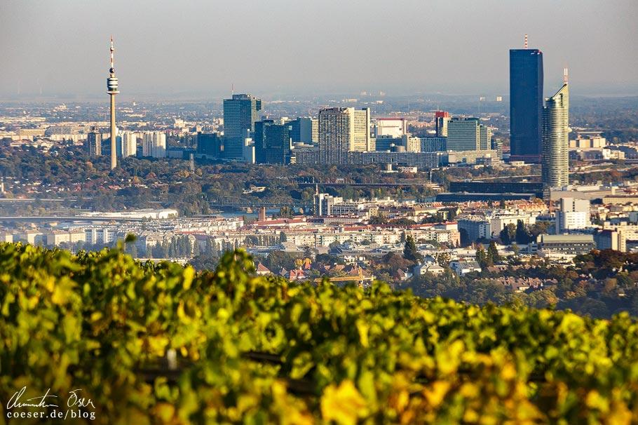 Fotospots Wien: Skyline von Wien vom Kahlenberg aus gesehen