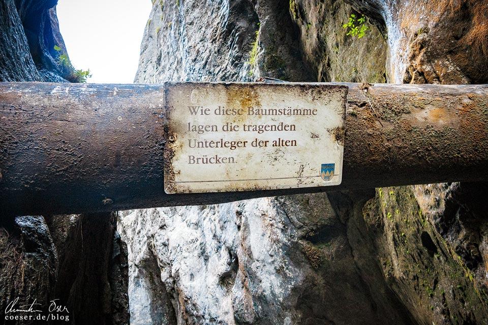 Baumstamm an der Alten Brücke in der Wörschachklamm