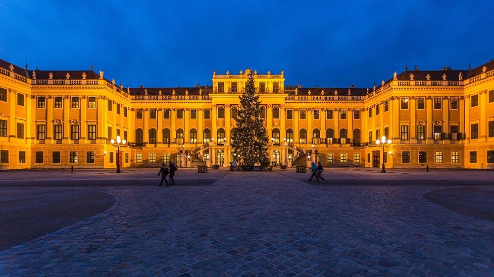 Christbaum vor dem Schloss Schönbrunn in Wien