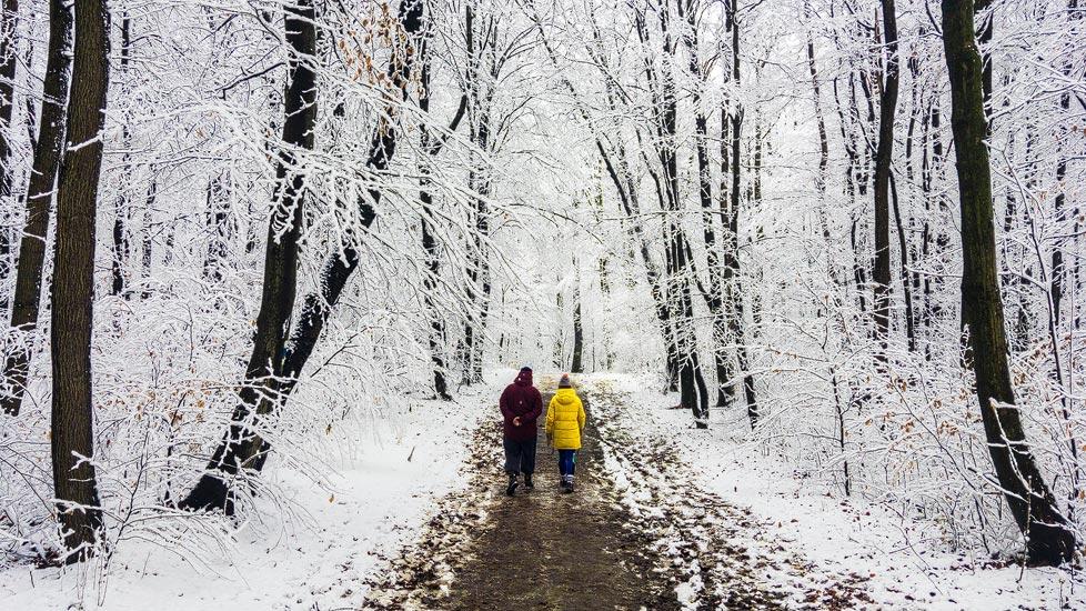 Zwei Wanderer auf dem verschneiten Stadtwanderweg 2 in Wien