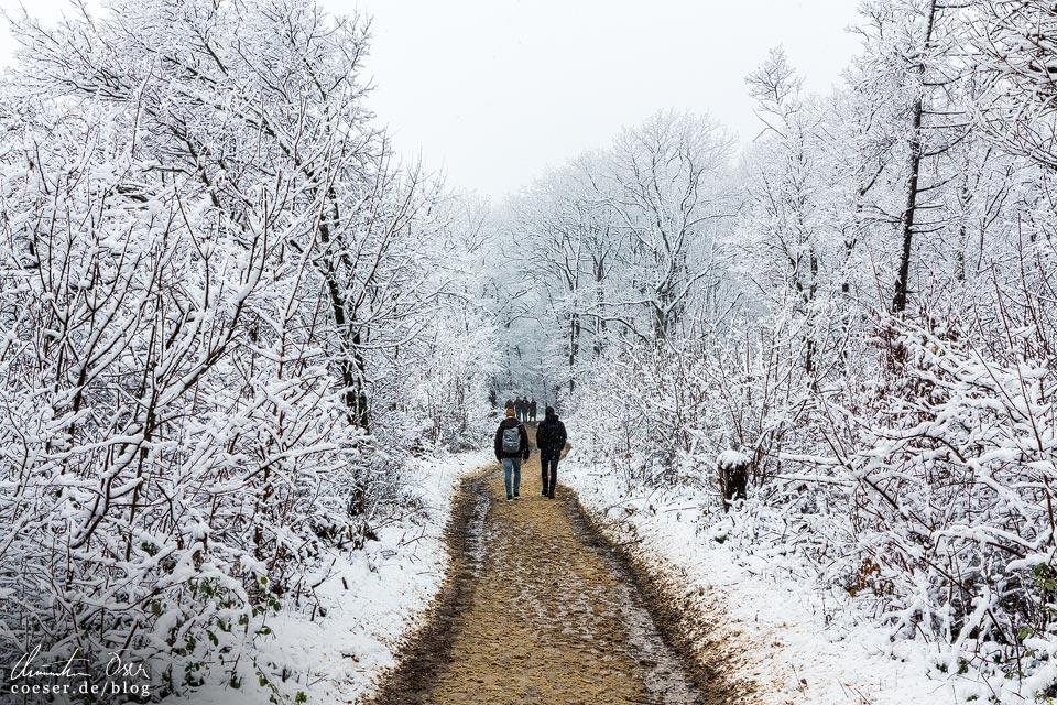 Stadtwanderweg 2 in Wien: Verschneiter Weg im Winter
