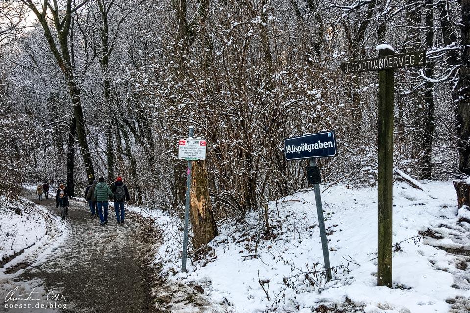 Stadtwanderweg 2 in Wien: Gspöttgraben im Schnee