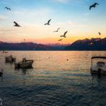 Sonnenuntergang im Hafenviertel von Ouchy