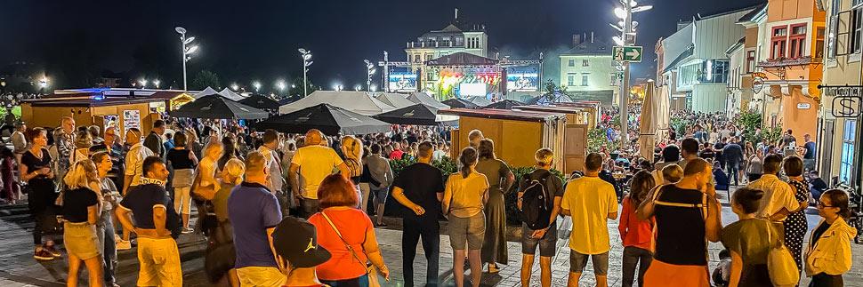 Konzertbesucher während des Fröccs Festivals in Györ