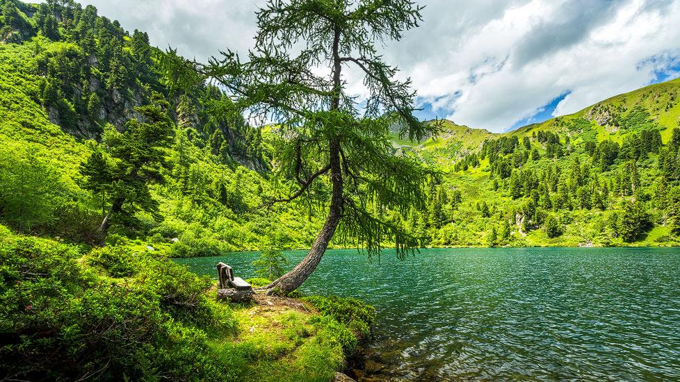 Holzbank am Großen Scheibelsee in Hohentauern