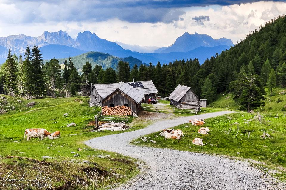 Ausblick von der Scheibelalm auf die umliegende Bergwelt