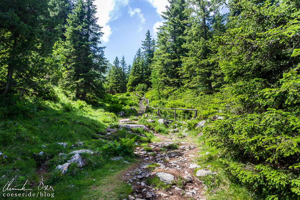 Wanderweg von der Edelrautehütte zum Großen Scheibelsee