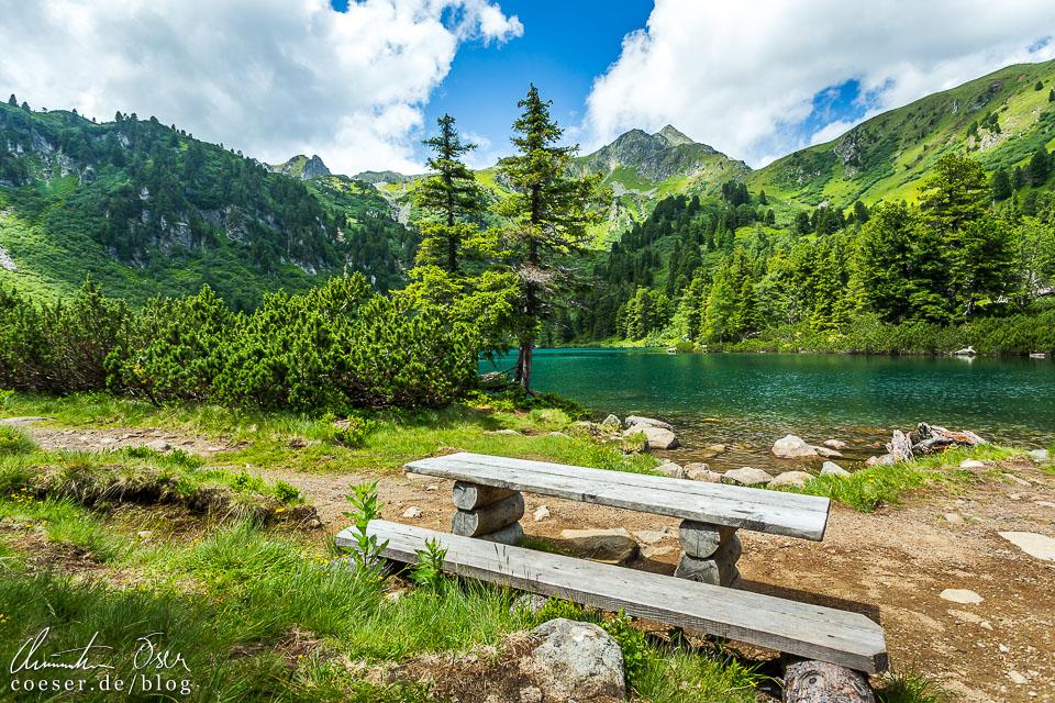Holzbank auf dem Wanderweg um den Großen Scheibelsee