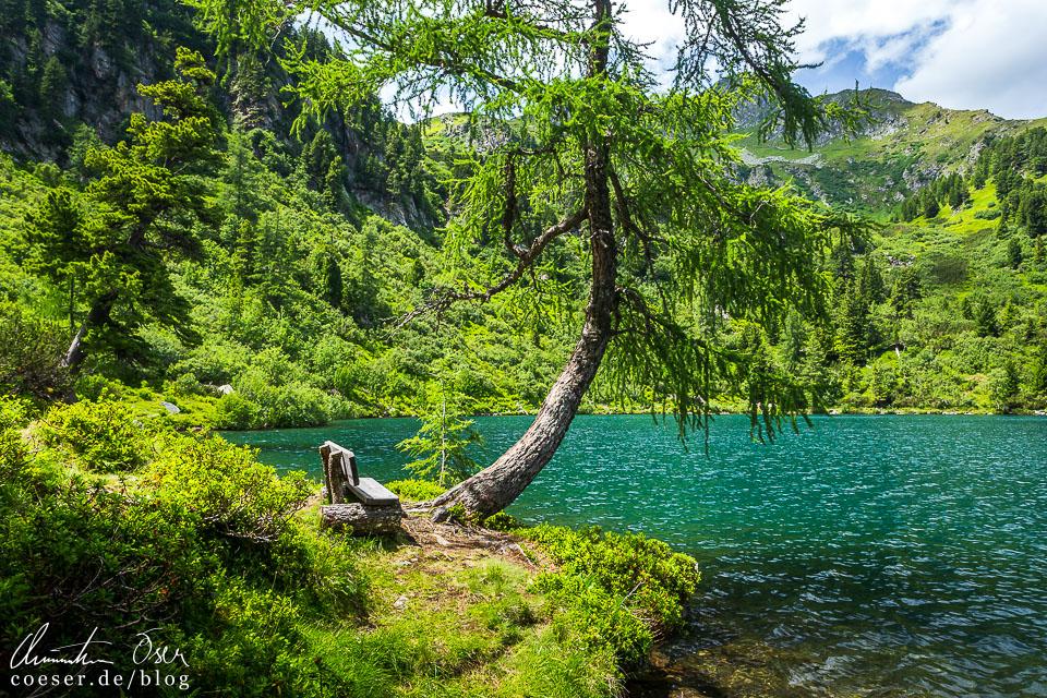 Wanderweg um den Großen Scheibelsee